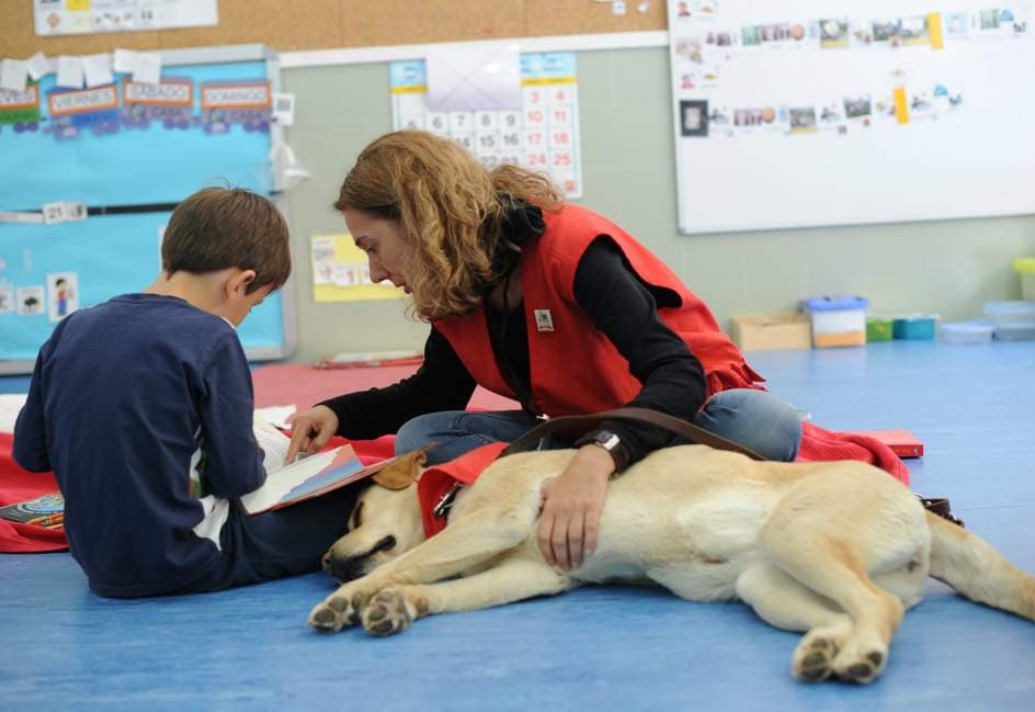 Perros y Letras - Perros de asistencia para niños con necesidades educativas especiales