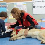 Perros de terapia - Pets 4 Good