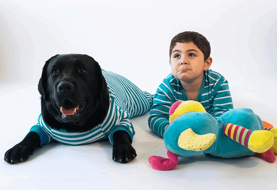 DogPoint - Perros de asistencia para niños con Autismo